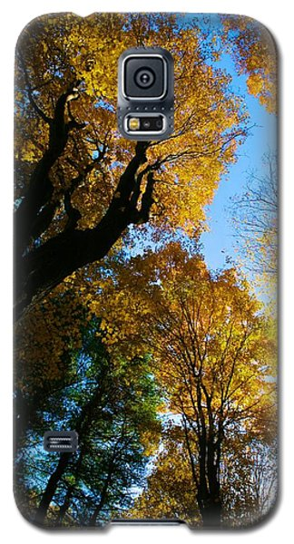 Huntington Clearstory Galaxy S5 Case