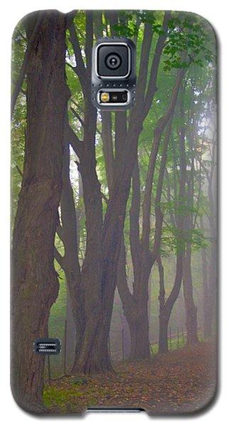 Huntington Mist  Galaxy S5 Case