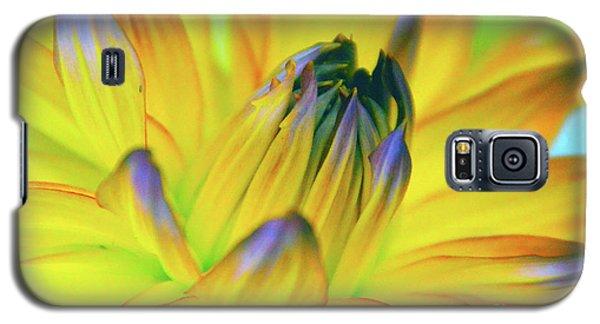 Husky Colors Galaxy S5 Case