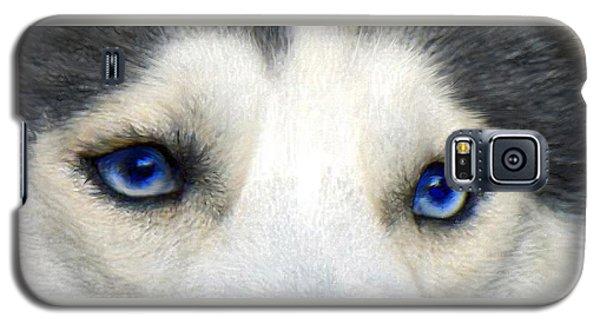 Husky Eyes Galaxy S5 Case