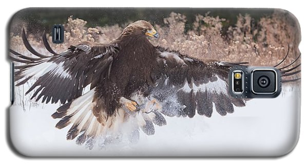 Hunting In The Snow Galaxy S5 Case by CR Courson