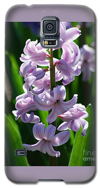 Galaxy S5 Case featuring the photograph Hyacinth 20120402_127a by Tina Hopkins