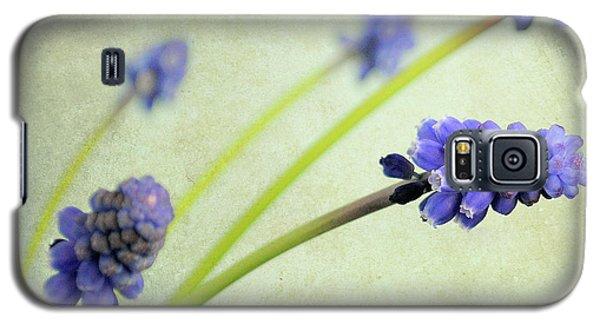 Hyacinth Grape Galaxy S5 Case by Lyn Randle