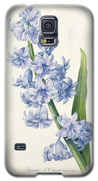 Hyacinth Galaxy S5 Case by Pierre Joseph Redoute