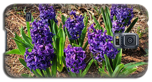 Galaxy S5 Case featuring the photograph Hyacinth by Rick Friedle