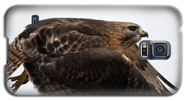 Hybrid Hawk Flyby  Galaxy S5 Case