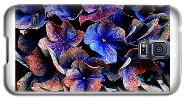 Hydranga Hues Galaxy S5 Case
