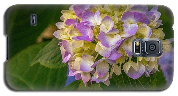 Hydrangea 2 Galaxy S5 Case