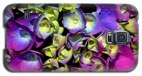 Galaxy S5 Case featuring the photograph Hydrangea by Vivian Krug Cotton