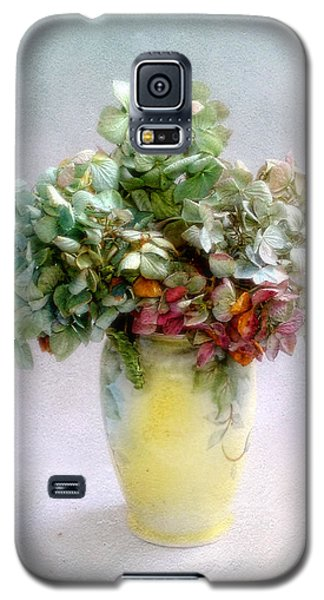 Galaxy S5 Case featuring the photograph Hydrangeas In Autumn Still Life by Louise Kumpf
