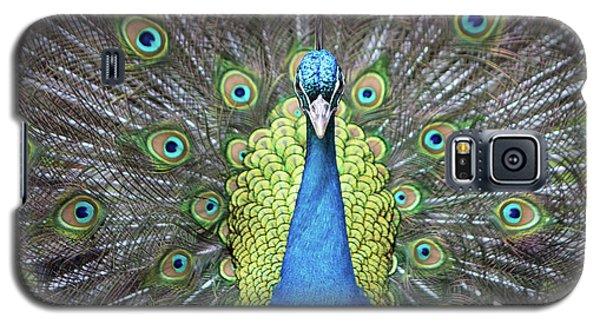 Hypnotic Galaxy S5 Case