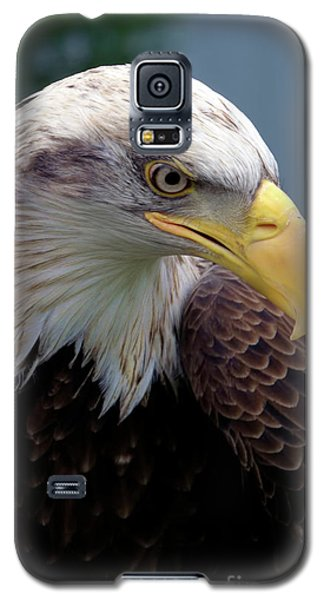 Lethal Weapon  Galaxy S5 Case by Stephen Melia