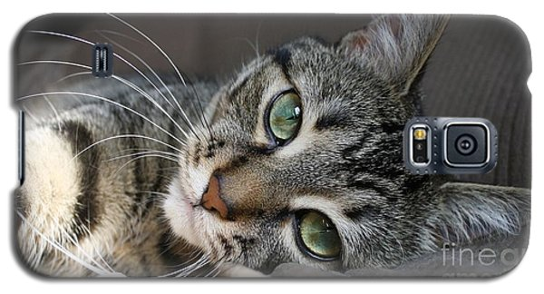 I Get Lost In Your Eyes Galaxy S5 Case by Heather King