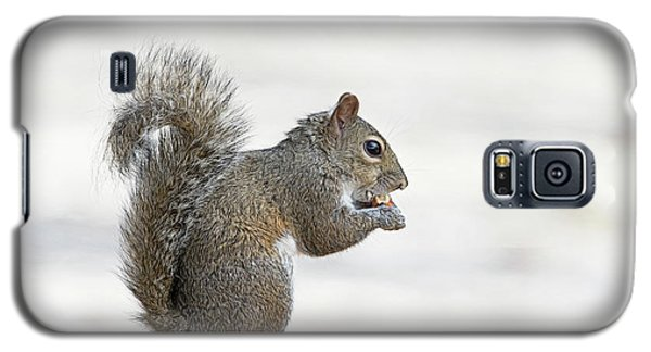 Galaxy S5 Case featuring the photograph I Have My Nuts by Deborah Benoit