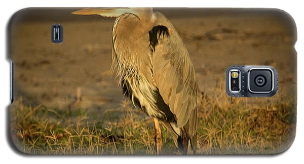I Know They Are Coming Wildlife Art By Kaylyn Franks Galaxy S5 Case