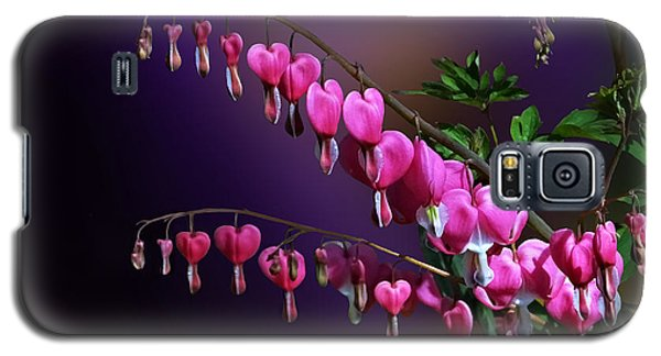 I Love Bleeding Hearts Galaxy S5 Case by Judy  Johnson