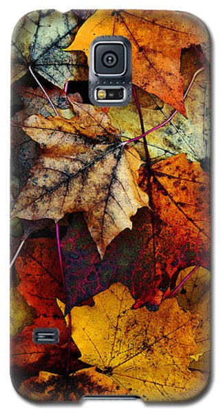 I Love Fall 2 Galaxy S5 Case by Joanne Coyle
