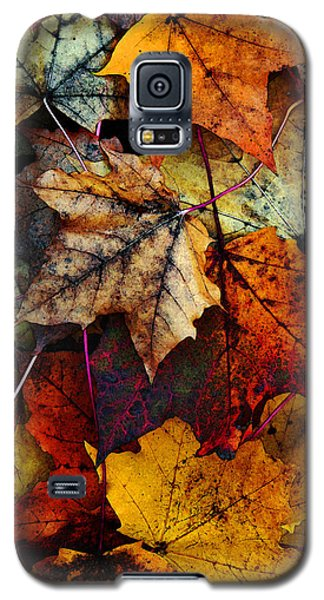 Card Galaxy S5 Case - I Love Fall 2 by Joanne Coyle
