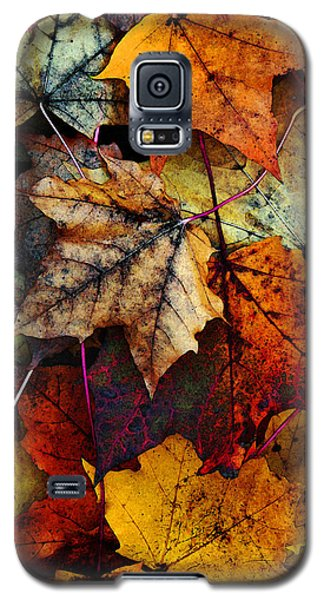 Niagra Falls Galaxy S5 Case - I Love Fall 2 by Joanne Coyle