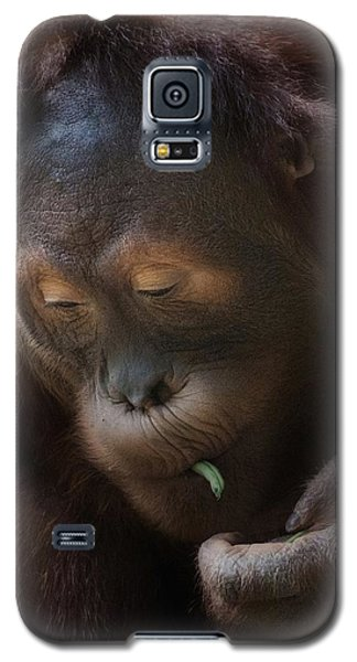 I Love Green Beans Galaxy S5 Case by CR  Courson