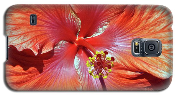 I Love Orange Flowers 2 Galaxy S5 Case by Lydia Holly