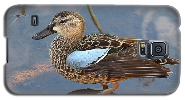 I Really Am A Green Winged Teal Galaxy S5 Case