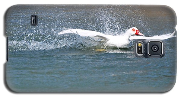 Galaxy S5 Case featuring the photograph I Think I Can Fly  by Teresa Blanton