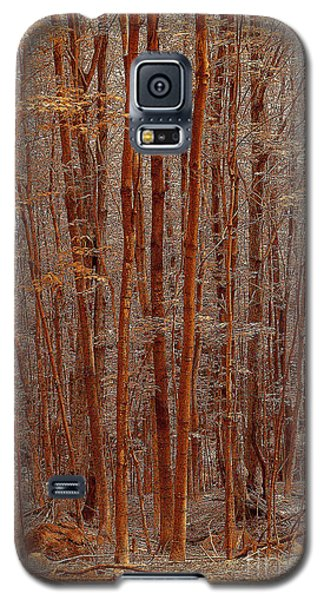 I Was Lost But Now I Am Found Galaxy S5 Case