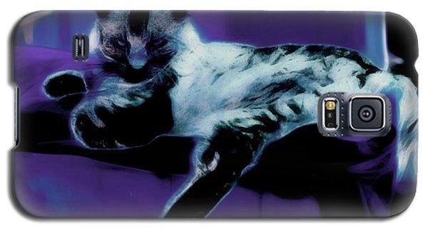 I Was Sleeping Galaxy S5 Case by Gina O'Brien