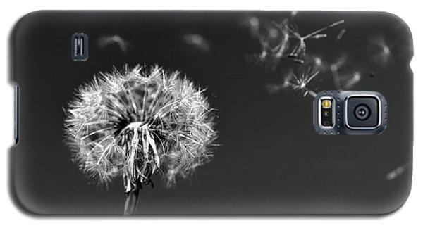 I Wish I May I Wish I Might Love You Galaxy S5 Case