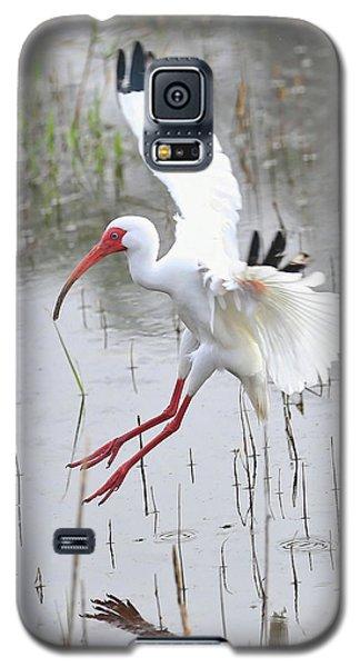 Ibis Soft Water Landing Galaxy S5 Case