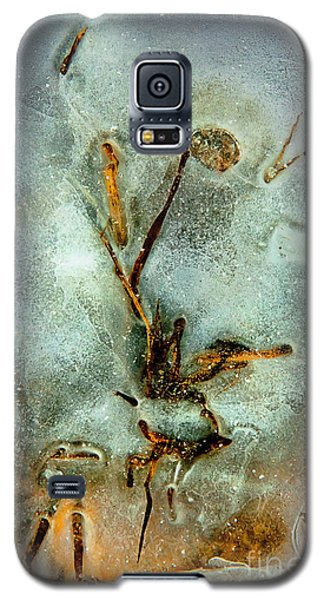 Galaxy S5 Case featuring the photograph Ice Abstract by Tom Cameron