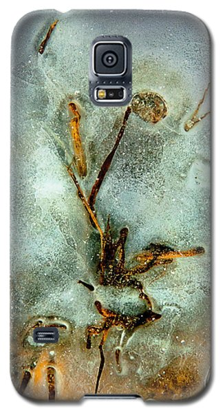 Ice Abstract Galaxy S5 Case