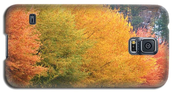 October Trees Galaxy S5 Case