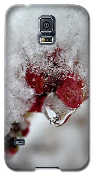 Ice Drip Galaxy S5 Case