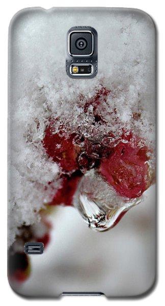 Ice Drip Galaxy S5 Case