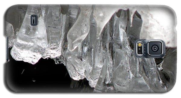 Ice Fantasy Galaxy S5 Case