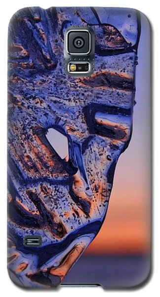 Ice Lord Galaxy S5 Case