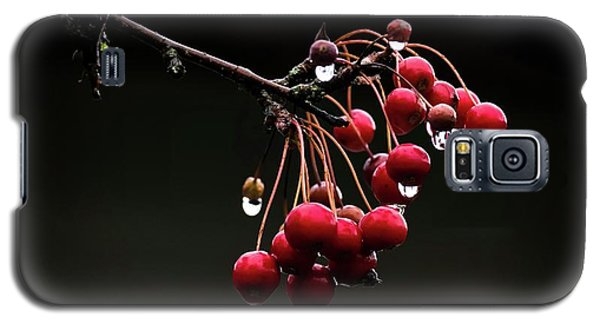 Iced Crab Apples Galaxy S5 Case
