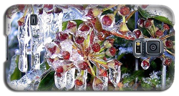 Iced Ivy Galaxy S5 Case