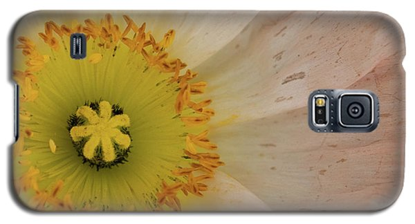 Galaxy S5 Case featuring the photograph Icelandic Poppy by Roger Mullenhour