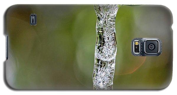 Icicle On Gardenia Leaf Galaxy S5 Case
