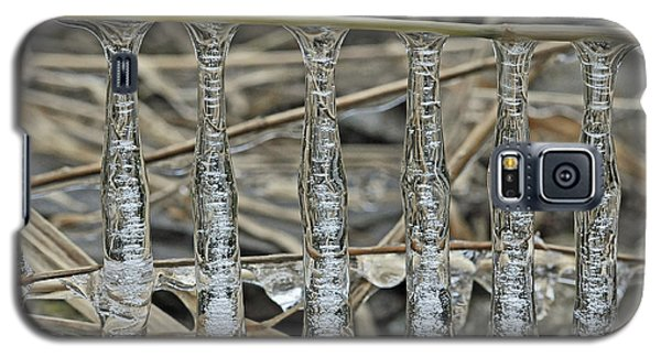 Galaxy S5 Case featuring the photograph Icicles On A Stick by Glenn Gordon