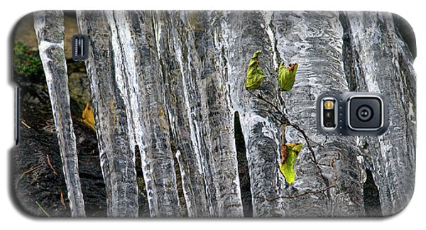 Galaxy S5 Case featuring the photograph Icicles by Sharon Talson