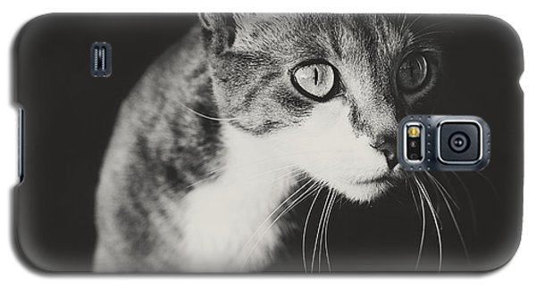 Ickis The Cat Galaxy S5 Case