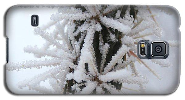 Icy Cactus Galaxy S5 Case