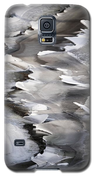Icy Shoreline Galaxy S5 Case