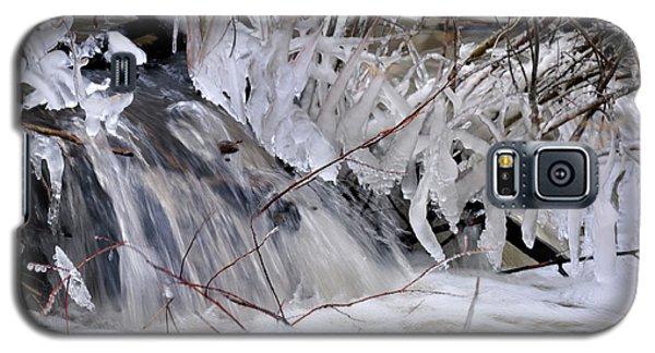 Icy Spring Galaxy S5 Case