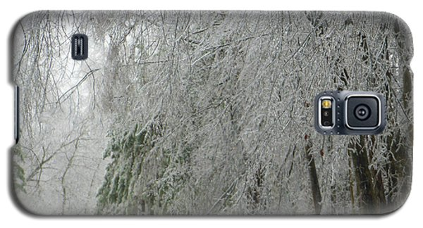 Galaxy S5 Case featuring the photograph Icy Street Trees by Rockin Docks Deluxephotos
