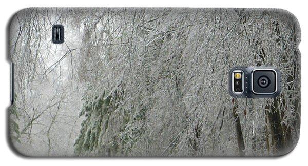 Icy Street Trees Galaxy S5 Case